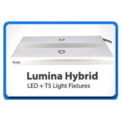 Lumina Hybrid 62