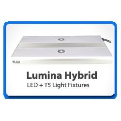 Lumina Hybrid 122
