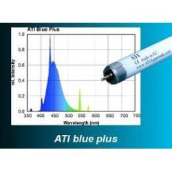 T5 ATI Blue Plus