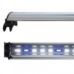 Lampara COB Led Blanco/Azul...