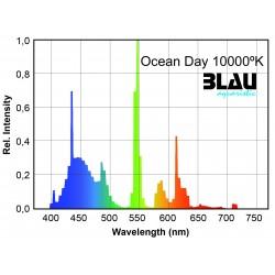 T5 Platinum Ocean Day