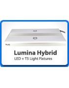Híbrida T5/LED